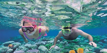 Full day snorkeling trip to Sharm el Naga